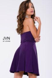 JVN 42589